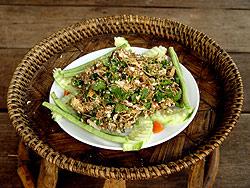adminlahp-tofu.png