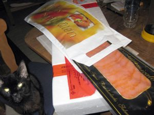 lachs-kater